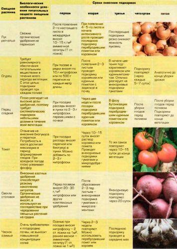 Чем удобрять огород весной: фото, таблицы